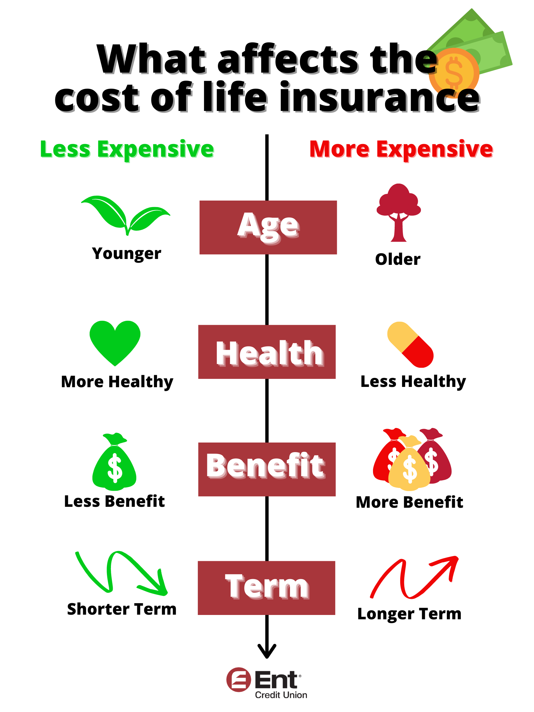 Infographic showing the different factors that affect the cost of life insurance: age, health, benefit amount and  term legnth.